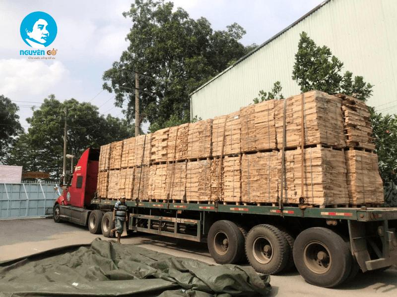 Nhu cầu tìm mua gỗ cao su ngày càng lớn